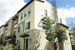 THE PARKER COLLECTION Condos For Sale