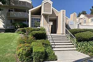 Browse active condo listings in PEPPERTREE